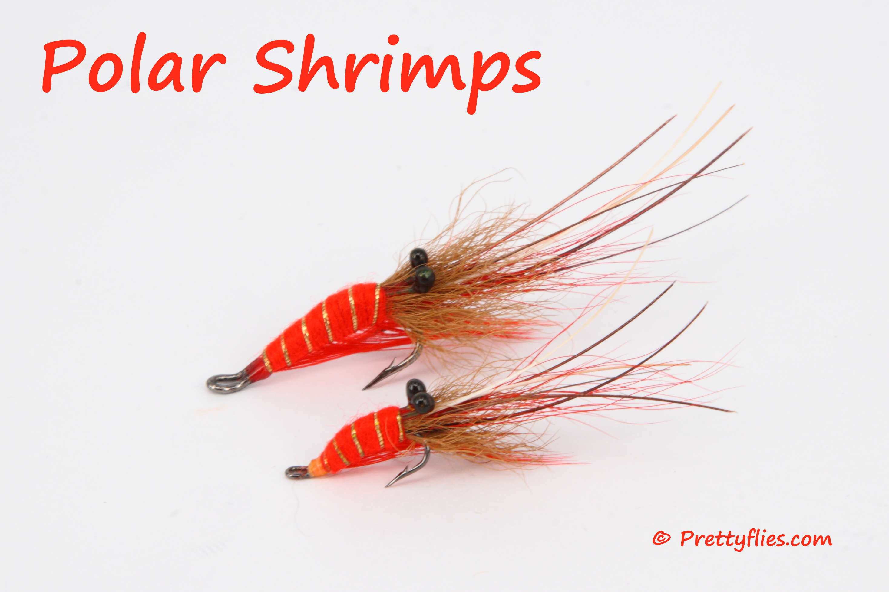 Polar Shrimps copy.jpg