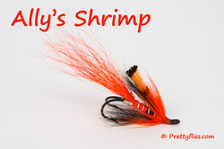 Allys Shrimp copy.jpg