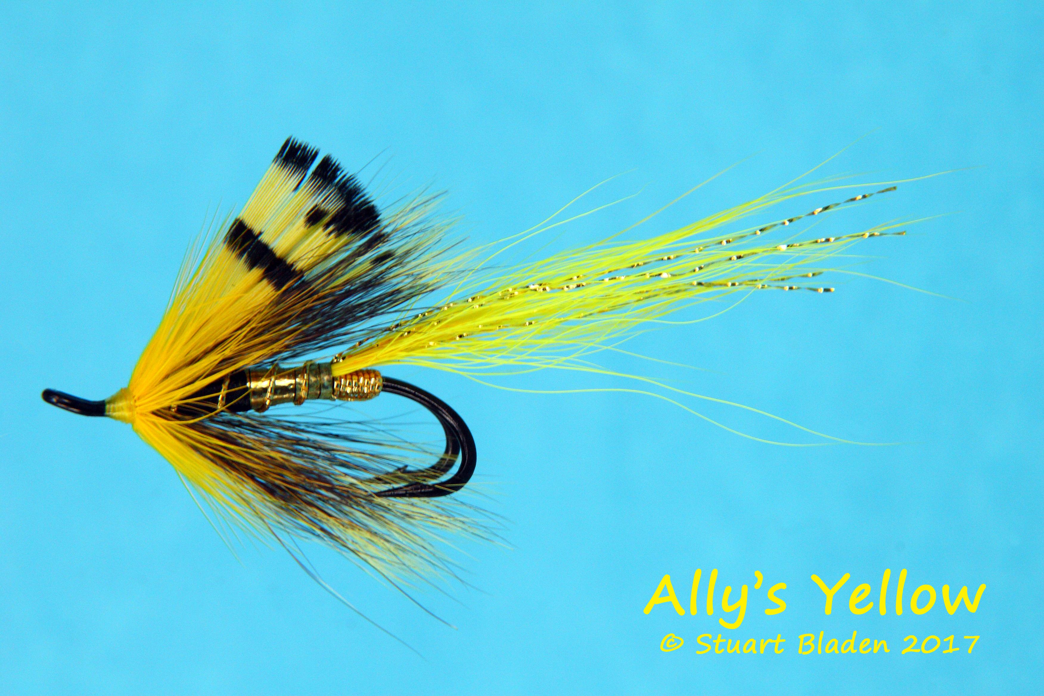 Allys2a.jpg