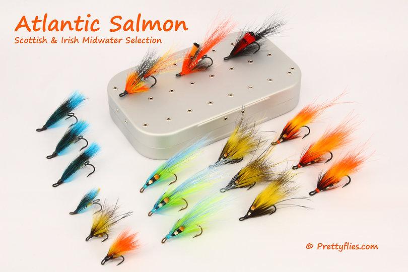 Atlantic Salmon Scottish Irish Midwater