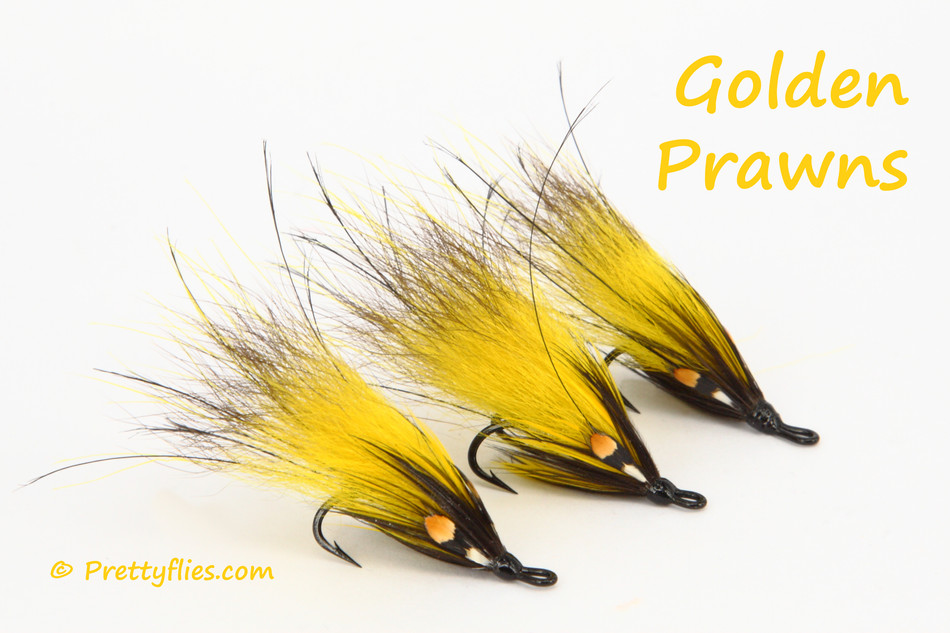 Golden Prawn Trio