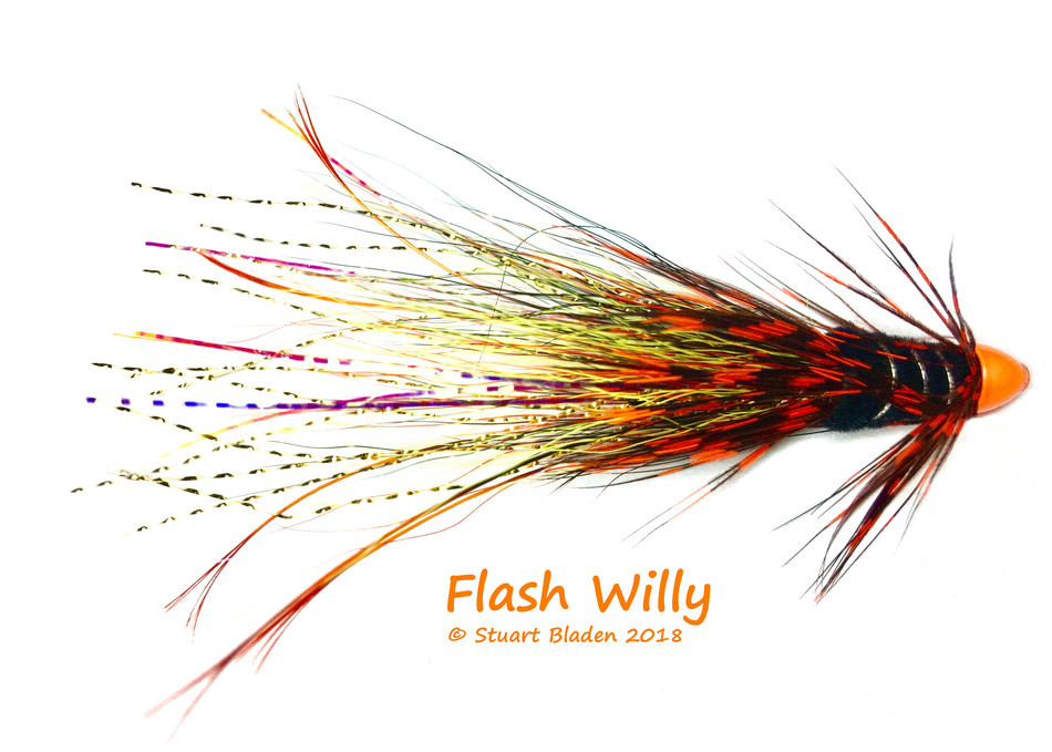 Flash Willy