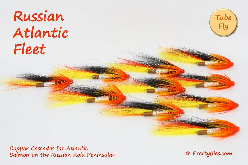 Russian Atlantic Fleet copy.jpg