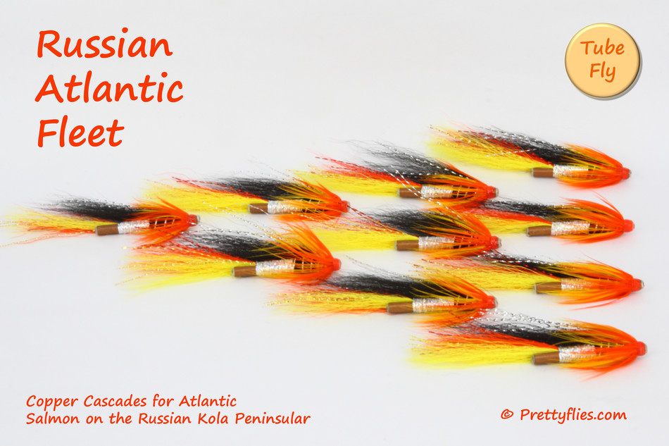 Russian Atlantic Fleet