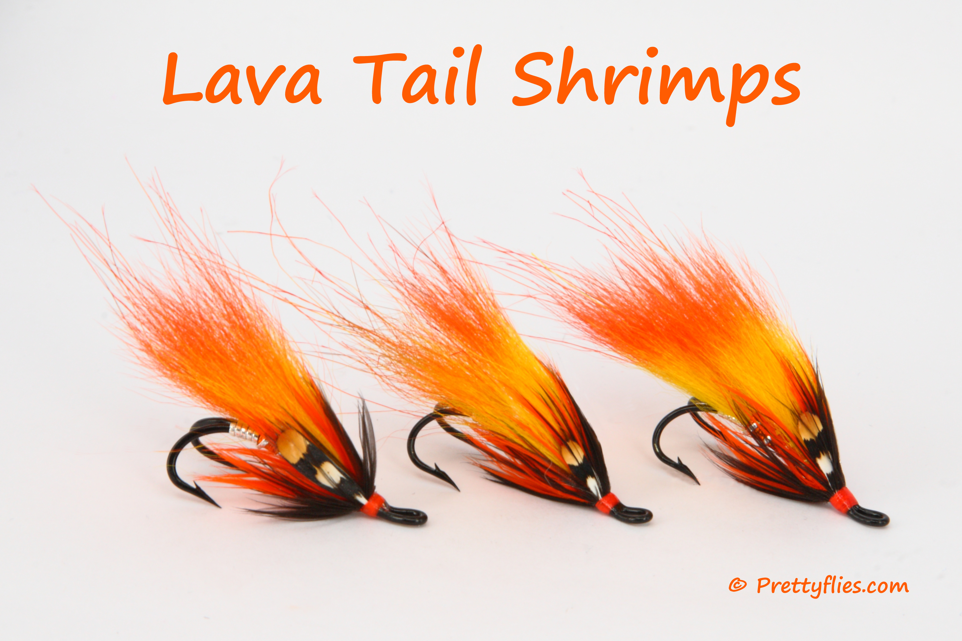 Lava Tail Shrimps Trio copy.jpg