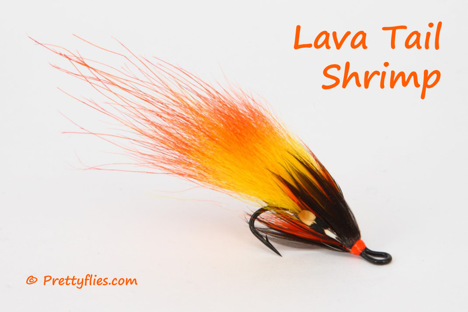 Lava Tail Shrimp