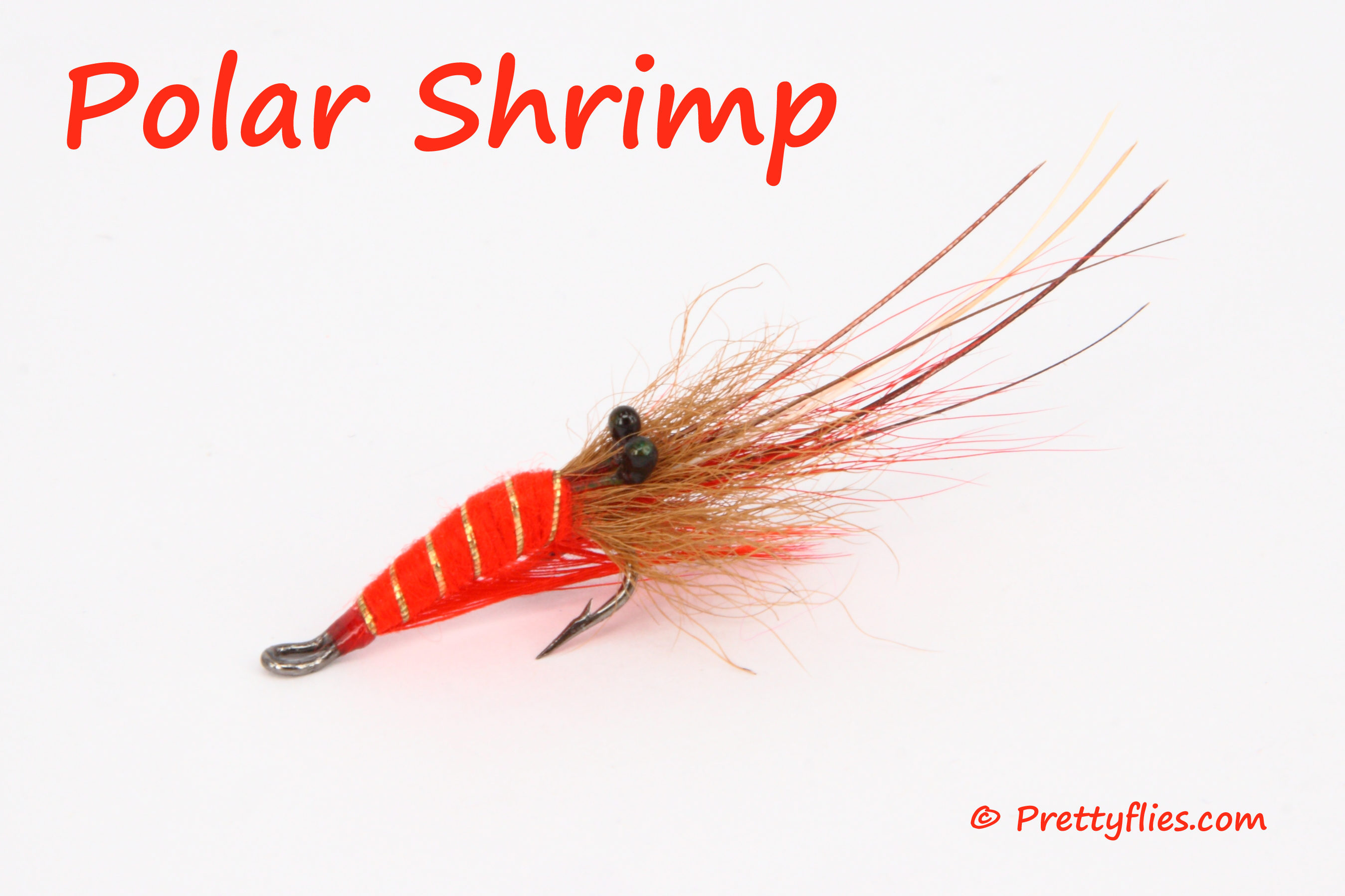 Polar Shrimp copy.jpg