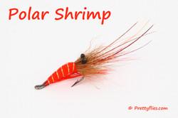 Polar Shrimp copy.jpg