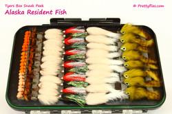 Sneak Peek Alaska Resident Fish 1 copy.j