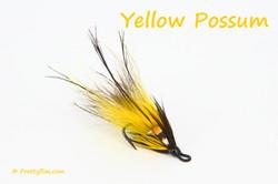 Yellow Possum copy.jpg