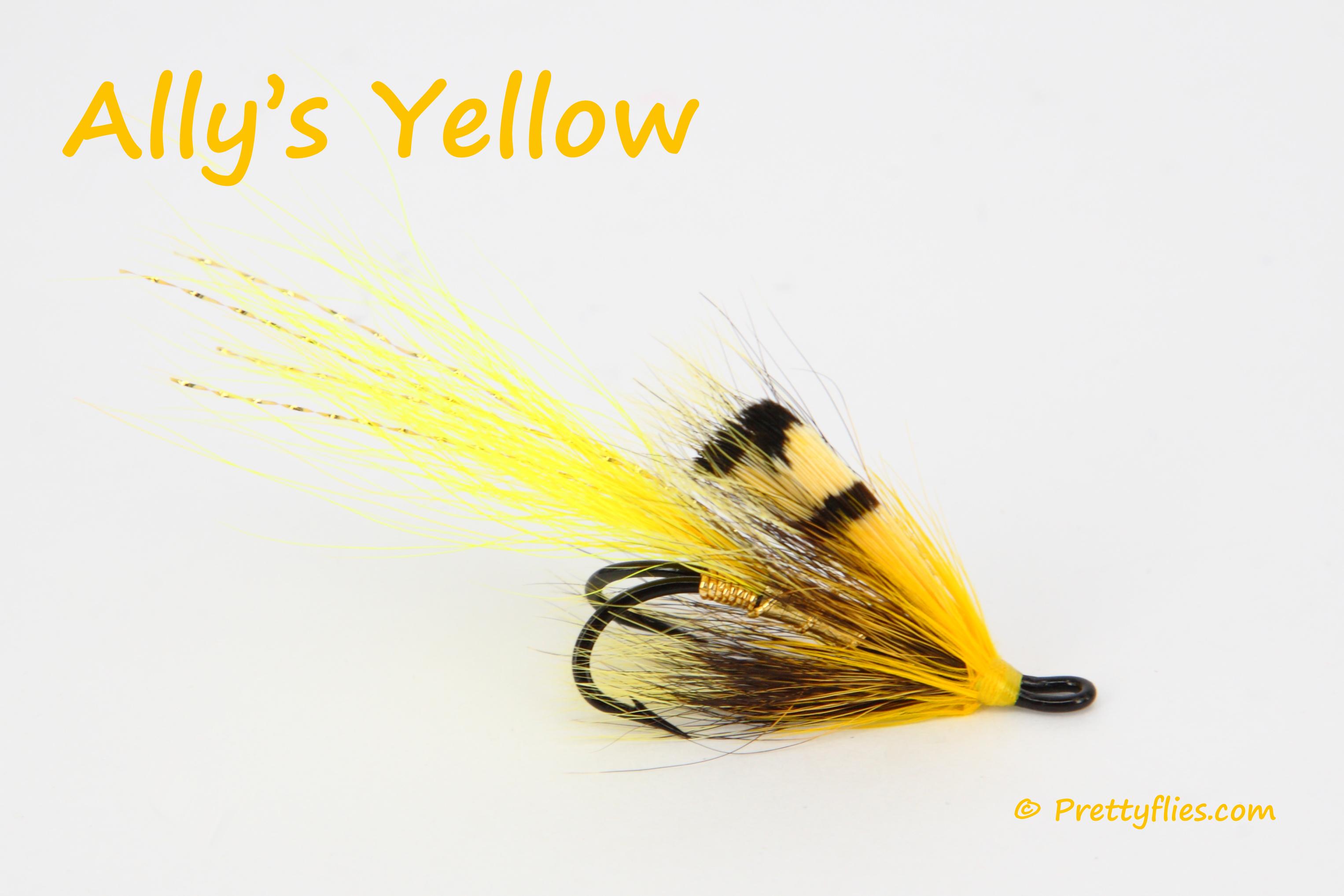 Allys Yellow copy.jpg