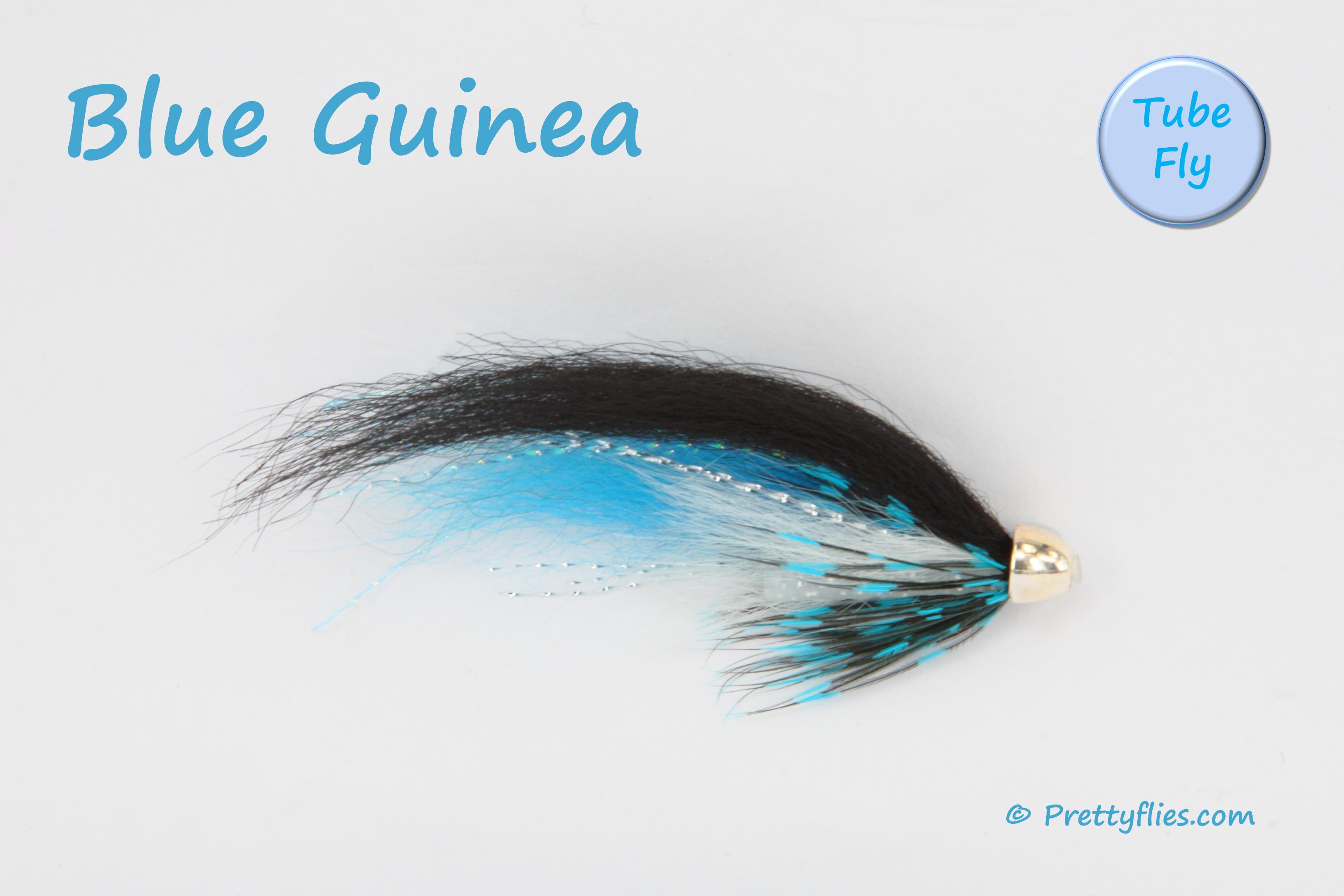 Blue Guinea copy.jpg