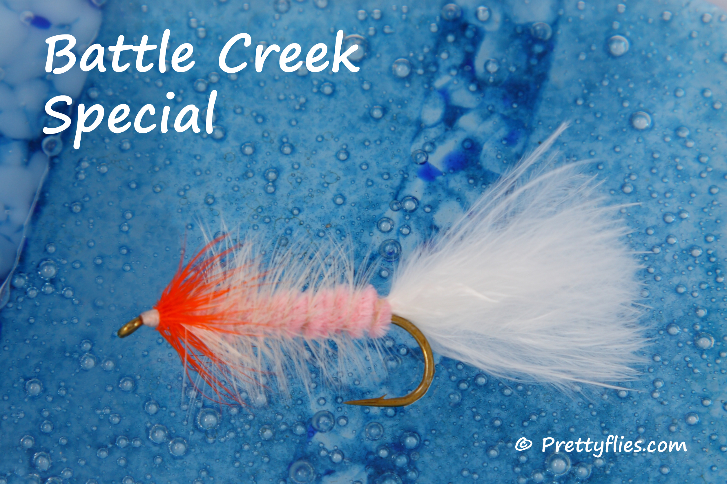 Battle Creek Special copy.jpg