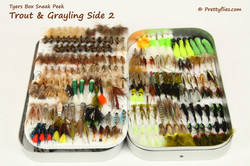 Sneak Peek Trout and Grayling 2 copy.jpg