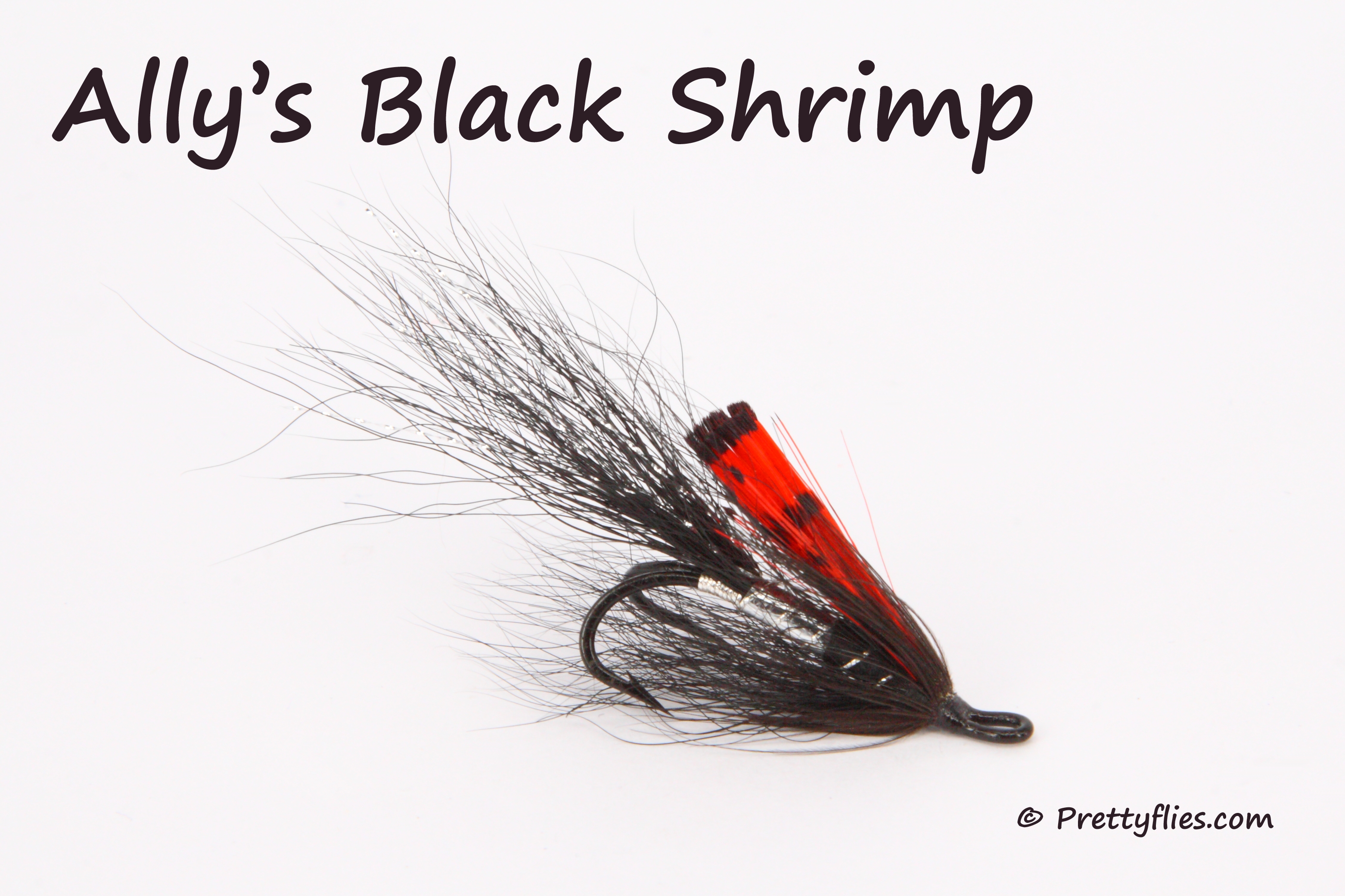 Allys Black Shrimp copy.jpg