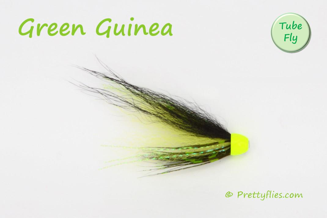 Green Guinea copy.jpg