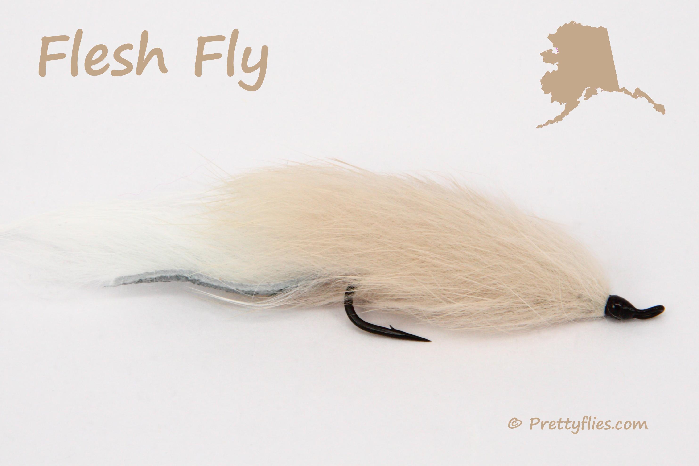 Flesh Fly.jpg