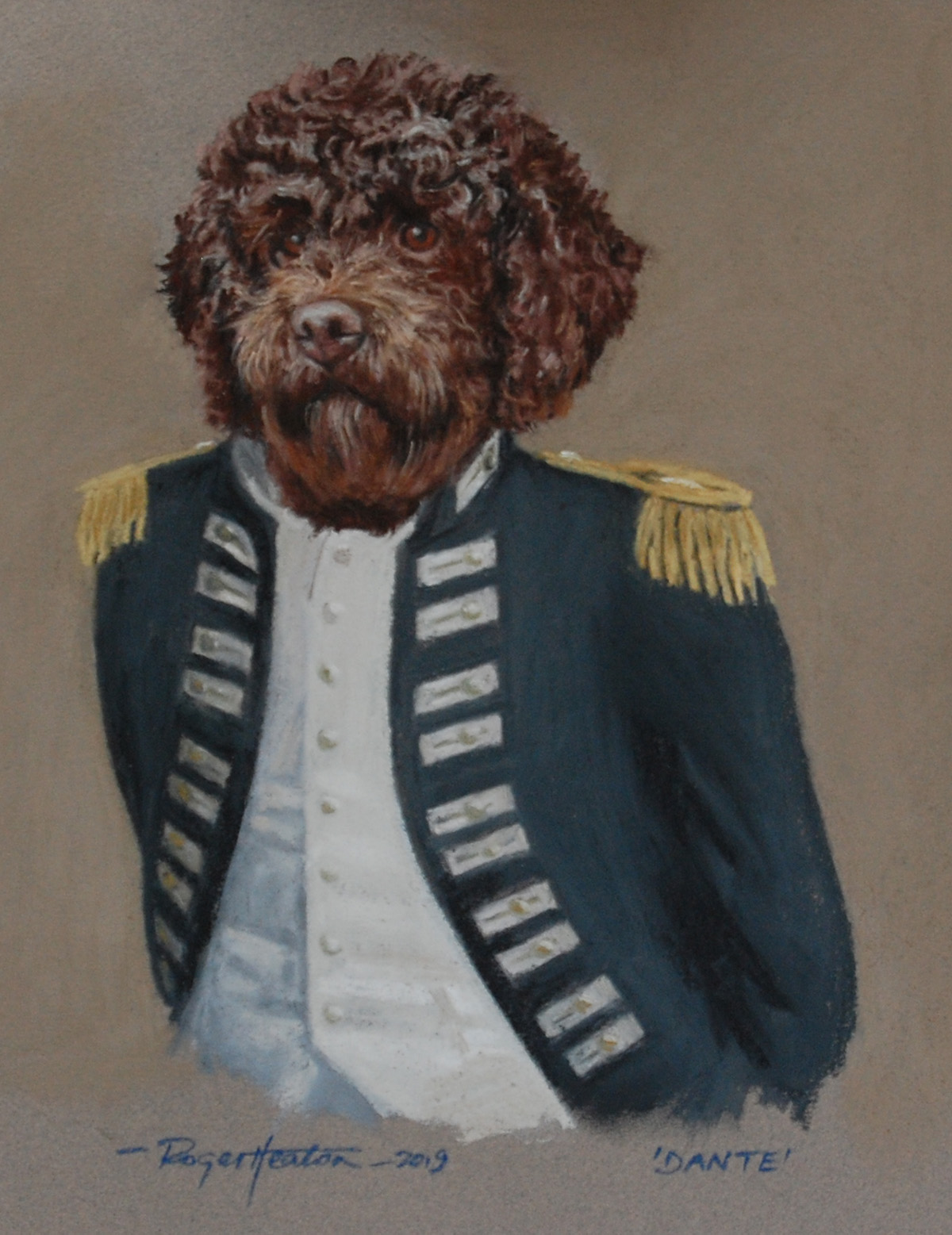 "Lagotto Romagnolo ""Dante"" in uniform"