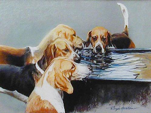 Watertrough Quartet