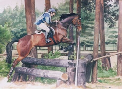 Miss Fiona Hartley eventing
