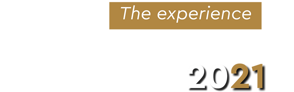 the experience logo part.png