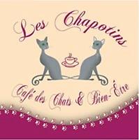 chapotins_r9caly.webp