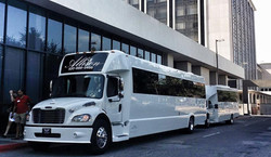 Party buses / Corporate outing
