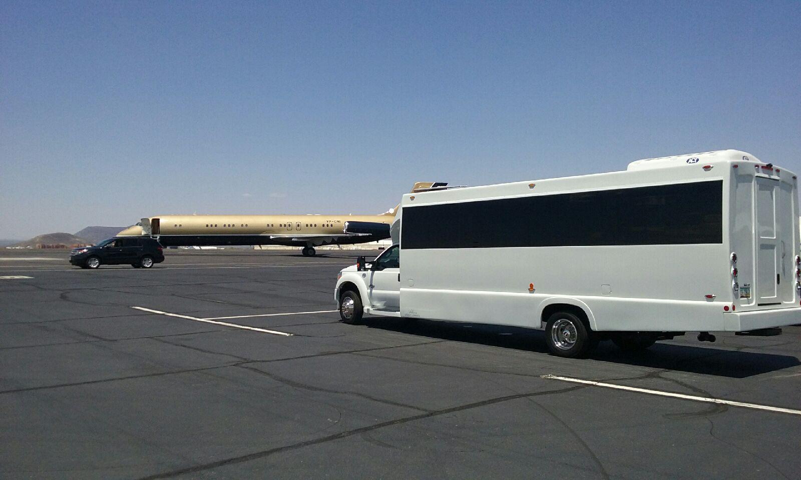 20Passenger Party Bus @ Millionaire