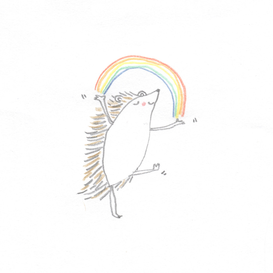 Hedgehog and rainbow