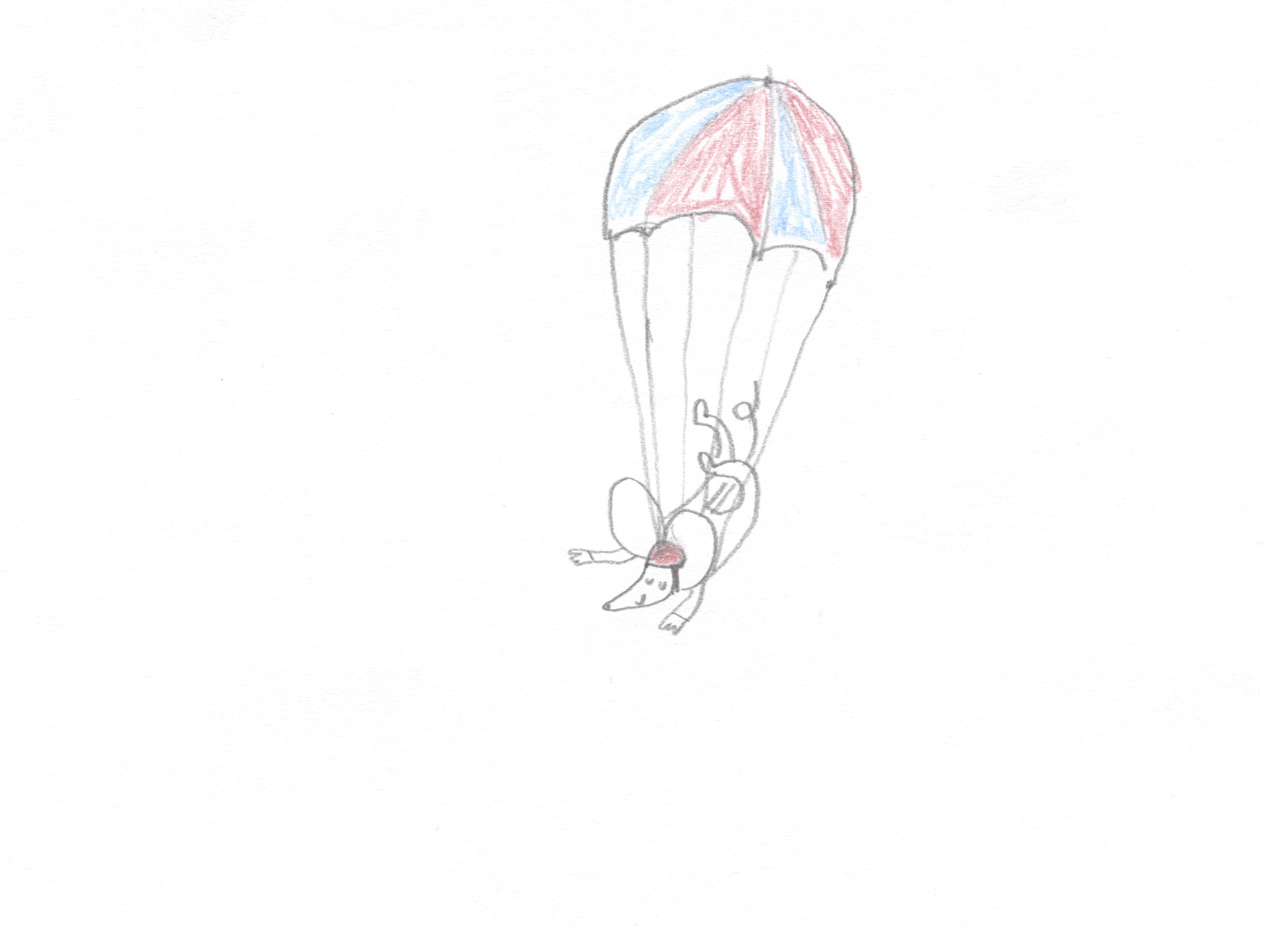 Sky Diving Mouse