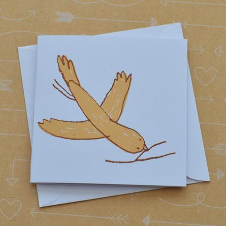 Bird and Twig