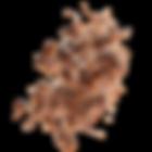 ASG-VisuelEclatChocAuLait-01.png