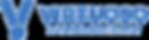 logo_blue_trasparente_virtuoso_png.png