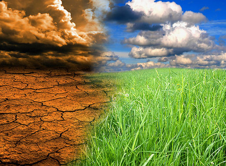 Is Climate Change Affecting The Food We Grow?