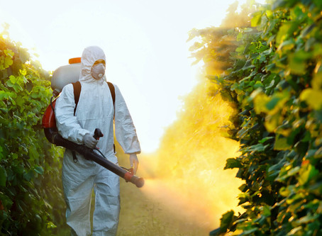 Pesticides - Are they worth the risk?