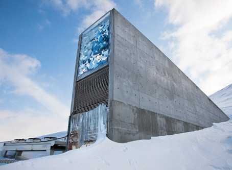 Sowing Seeds by Faith Versus The Global Seed Vault