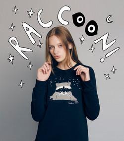2016- Raccoon