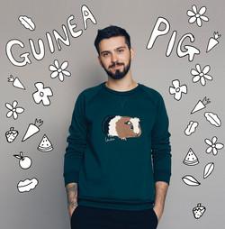 2016- Guinea pig