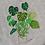 Thumbnail: Plant Sweater- Monstera