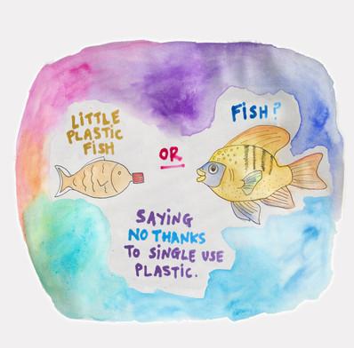 Saying No Thanks to single use plastic