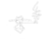 Signature Logo copy.png