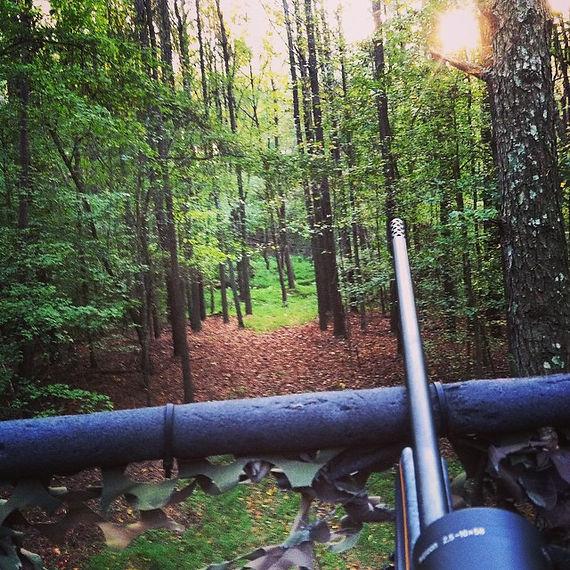 Hunting in Halifax County NC.jpg