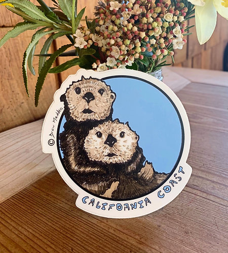 California Coast Otters