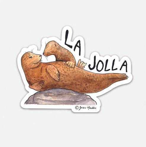 La Jolla Seal Pups