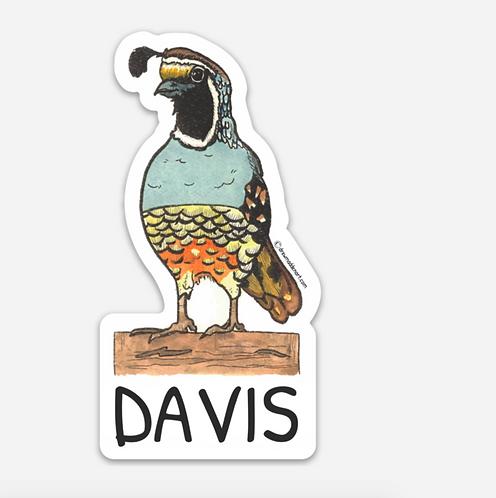 Davis Quail