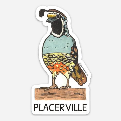 Placerville Quail