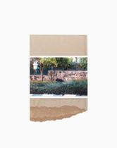 'Collage In Arad' 32/32