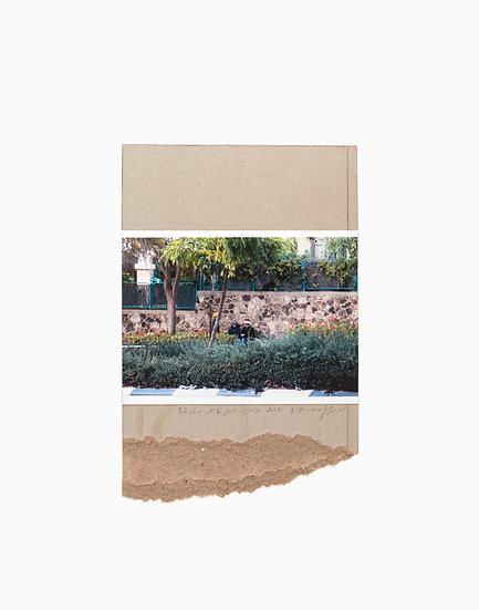 Collage In Arad 32/32