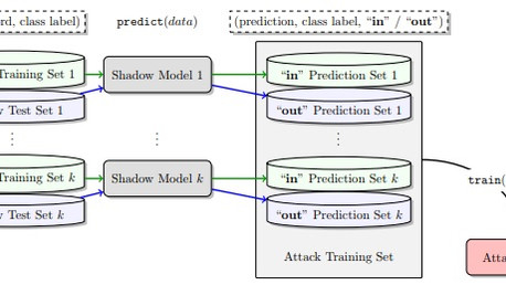 Privacy Attacks on Machine Learning Models