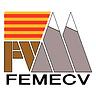 FEMECV.png